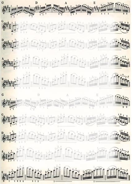 Galeria Papieru diplomy Noty 170g, 25ks