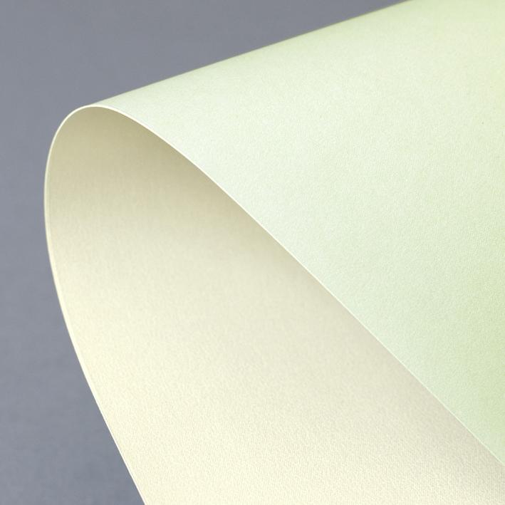 Galeria Papieru ozdobný papír Prime zelená/ivory 220g, 20ks