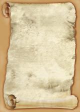 Galeria Papieru diplomy Papirus 170g, 25ks